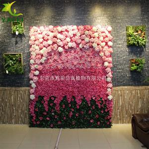 2019年香港历史开奖记录版