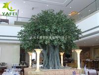 造型古榕树