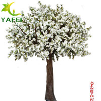 婚庆白色樱花树