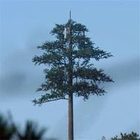 通信塔松树