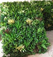 阻燃防紫外线植物墙可提供检测报告