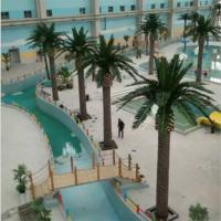 水上乐园海藻树