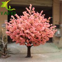 樱花树生产厂家